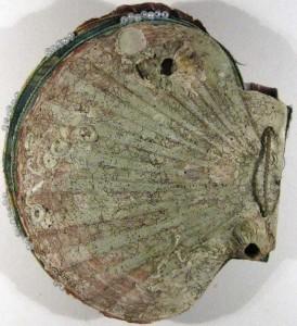 Book-5-Rear-shell